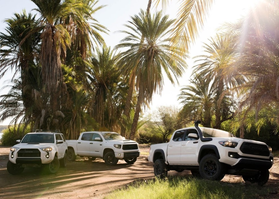 2020 Toyota Tacoma Release Date and MSRP